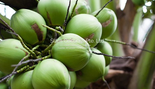 Siam Coconut Pte. Ltd.